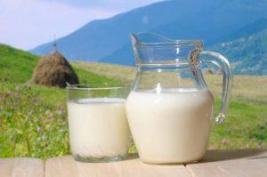 Thành Phần Dinh Dưỡng Và Lợi Ích Sức Khỏe Của Sữa